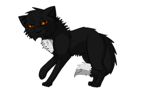 Ravenpaw by NikyArtist
