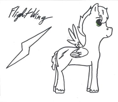 Flight Wing by P0ETESS