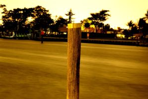 Piling by Dustinpg