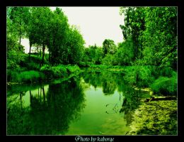 Summer green river by kaborge