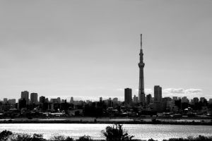 Black and White Tokyo by Destroth