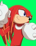 Knuckles the Echidna [Sonic X style] by Muetron