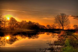 Golden afternoon light by ChaoticRiver