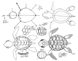 Draw a Sea Turtle by Diana-Huang