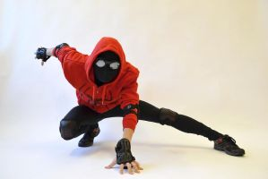 Spidey Pose 1 by ezy94