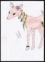 Deer - Competition Entry by PhotoTini