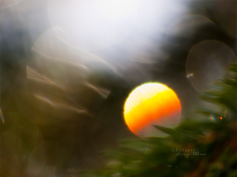 Sunset bokeh by Katari01