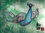 Peacocks in Forest by renji7
