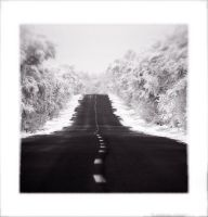 Winter Road I. by D-look
