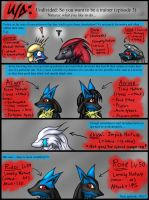 Undivided: So you want to be a trainer 3 by Snowfyre