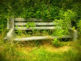 Park Bench by Sidneys1
