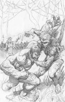 HVST cover pencils by imagine1207