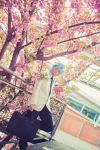 Kuroko no Basket - Sky Blue Days by TrustOurWorldNow