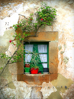 Rural Window by Ana-D