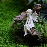 Fairy in the Woodland by MayEbony