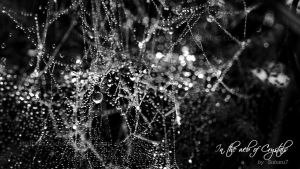 In the web of crystals by Subaru7