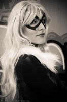 Black Cat BW by melissa-andrade