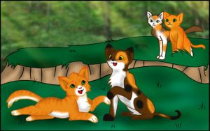 Firestar Spottedleaf and kits by SilverToraGe
