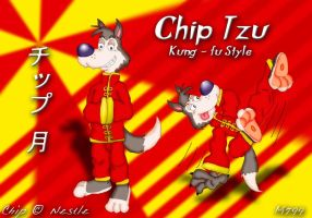 Chip Tzu - Mini sensei 1 by mamei799