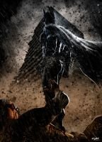 THE DARK KNIGHT RISES - tribute by isikol