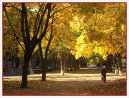 The autumn colours_02 by Vipra-Ur