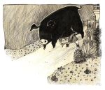 The black pig by Siarina
