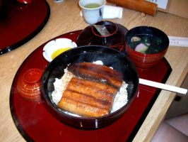 Unagi on rice by MColling