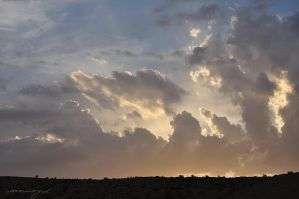 Clouds by AMORoyal