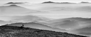 Babia Gora sunrise cut bw by matios