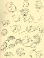 Sketches of The Zoo Variety by Haiomi