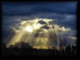 November sun... by Yancis