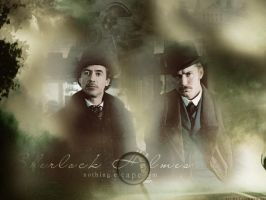 Mr.Holmes and Mr.Watson by angie-sg