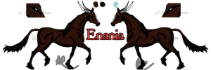 Enania - Agwin Mare Ref - Pure Blood by The-Bone-Snatcher