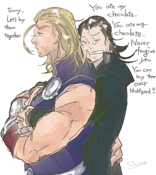 Thor and Loki by shinma648
