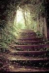 Staircase by StuartChell