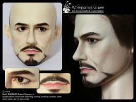 Robert Downey Jr. faceup by scargeear