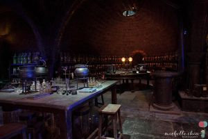Dungeons and Potions by MichelleChiu