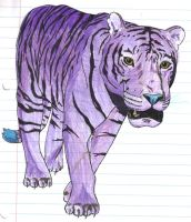 Purple tiger by moatswimmer-inugrl