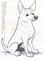 Cattle Dog Caricature Sketch by timmcfarlin