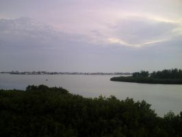 the intracoastal by raver6url