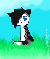 stone as a kitten by Animallover08