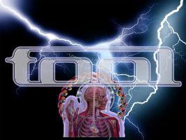 Tool Band Lightning Wallpaper by gorphus