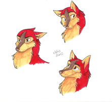 Jen headshots by Stray-Sketches