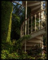 When suddenly...stairs by Isyala