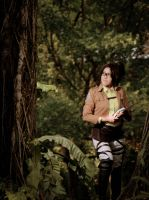 Shingeki - Just a walk around the forest by yaminogames