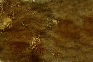 Texture 186 by deadcalm-stock