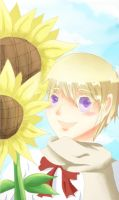 APH: Sunflower Child by onnaran