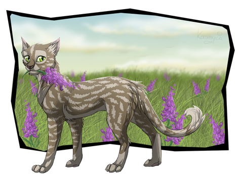 Where are you going, Jayfeather? - Kestrelflight by Kocurzyca