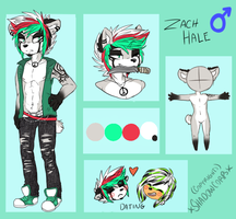 -Zach Reference- -2014- by SC00TAH