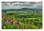 View from Csobanc Hill by zozzy1980